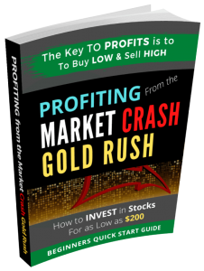 Profiting from the Market Crash Gold Rush: Where to Invest Cheap Global Stocks Online
